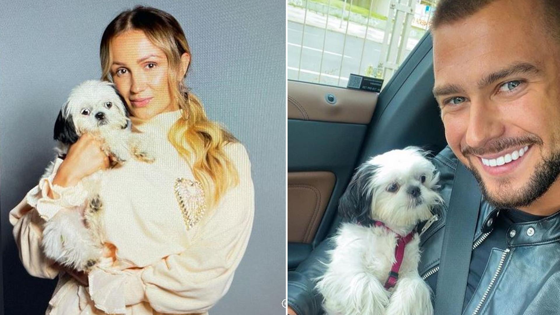Sylwia Madeńska oskarża Mikołaja Jędruszczaka o kradzież psa. Nawet jego rodzina jest bezradna