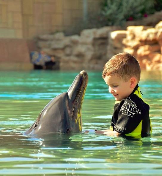 Marcela Leszczak skrytykowana za delfiny